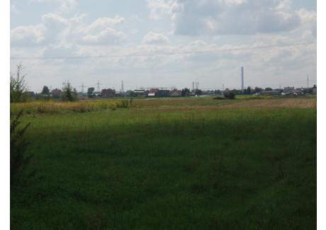 Działka na sprzedaż - Borzęcin Duży, Stare Babice (gm.), Warszawski Zachodni (pow.), 1000 m², 215 000 PLN, NET-777843