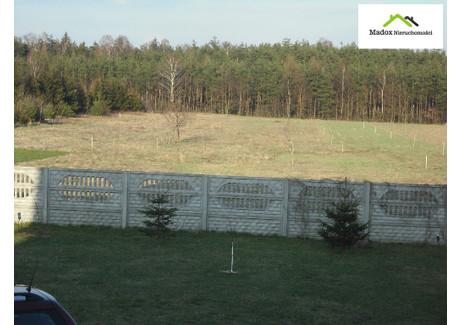 Działka na sprzedaż - Borowe, Wręczyca Wielka, Kłobucki, 860 m², 38 700 PLN, NET-MDX-GS-3664