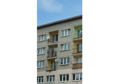 Lokal do wynajęcia - Centrum, Pabianice, Pabianicki, 549 m², 27 573 PLN, NET-MDR-LW-175