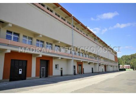 Magazyn do wynajęcia - Pabianice, Pabianicki, 1650 m², 19 800 PLN, NET-MDR-HW-201