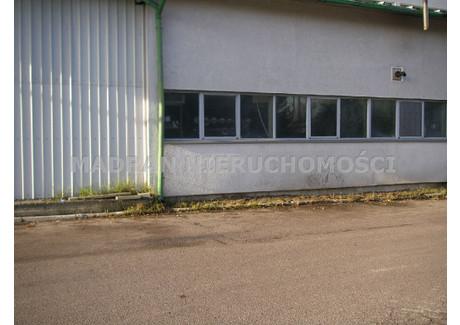 Magazyn do wynajęcia - Teofilów, Bałuty, Łódź, Łódź M., 280 m², 4000 PLN, NET-MDR-HW-19