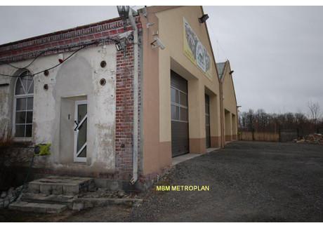 Magazyn, hala na sprzedaż - Prudnik, Prudnik (gm.), Prudnicki (pow.), 1000 m², 460 000 PLN, NET-00056/P/MBM