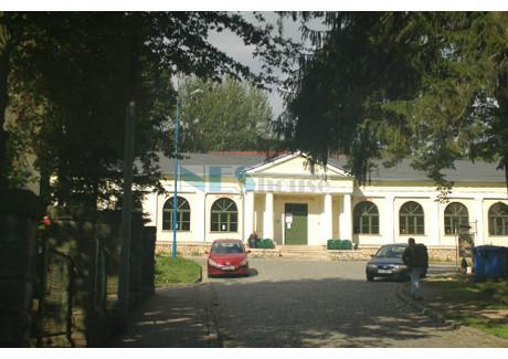 Lokal gastronomiczny na sprzedaż - Długopole-Zdrój, Bystrzyca Kłodzka, Kłodzki, 2030 m², 650 000 PLN, NET-NES-BS-387