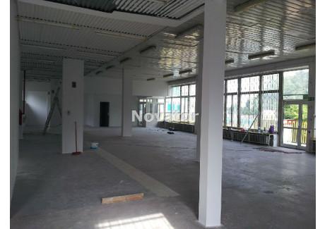 Lokal do wynajęcia - Kapuściska, Bydgoszcz, Bydgoszcz M., 460 m², 8000 PLN, NET-NOV-LW-116703-1