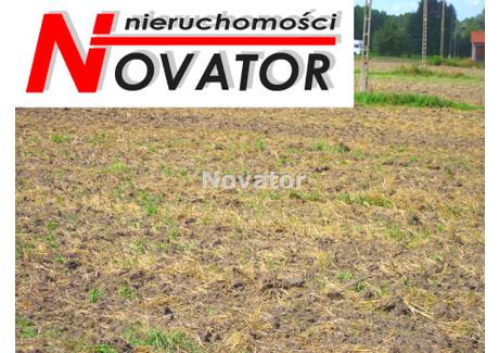 Działka na sprzedaż - Otorowo, Solec Kujawski, Bydgoski, 3000 m², 184 000 PLN, NET-NOV-GS-95516