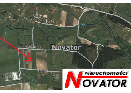 Działka na sprzedaż - Olimpin, Nowa Wieś Wielka, Bydgoski, 3009 m², 206 000 PLN, NET-NOV-GS-106774