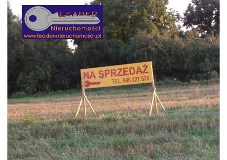 Działka na sprzedaż - Świebodzin, Świebodziński, 5200 m², 143 500 PLN, NET-3977