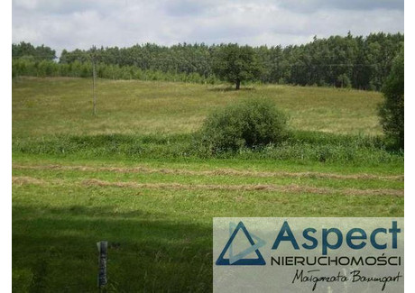 Działka na sprzedaż - Lisie Pole, Chojna, Gryfiński, 23 200 m², 210 000 PLN, NET-ASP00247