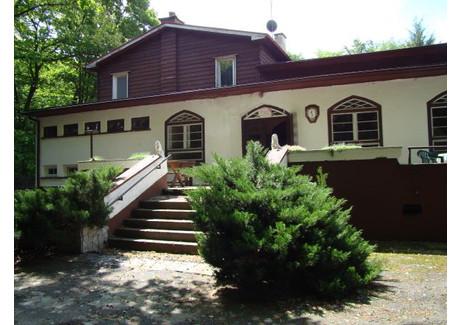 Lokal gastronomiczny na sprzedaż - Głubczyce, Głubczyce (gm.), Głubczycki (pow.), 330 m², 690 000 PLN, NET-26/13