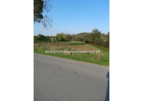 Działka na sprzedaż - Żabia Wola, Grodzisk Mazowiecki, Grodziski, 6000 m², 270 000 PLN, NET-GRO-GS-1139