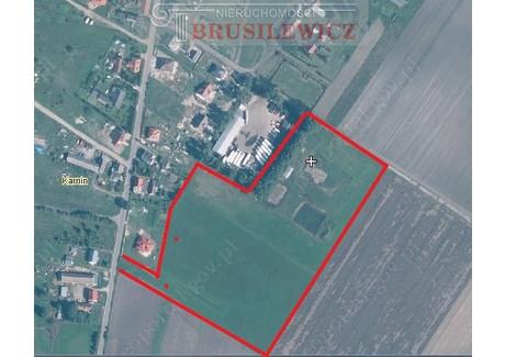 Działka na sprzedaż - Karnin, Deszczno, Gorzowski, 34 500 m², 490 000 PLN, NET-34/1459/OGS