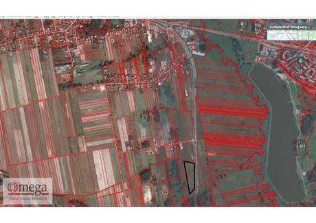 Działka na sprzedaż - Stare Iganie, Siedlce, Siedlecki, 10 800 m², 648 000 PLN, NET-OMG-GS-45037