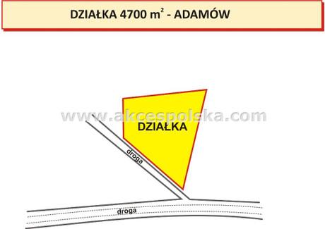 Działka na sprzedaż - Wola Pieczyska, Chynów, Grójecki, 4700 m², 315 000 PLN, NET-GS-38634-1