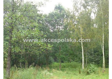 Działka na sprzedaż - Leśna Nowy Prażmów, Prażmów, Piaseczyński, 3100 m², 186 000 PLN, NET-GS-35523