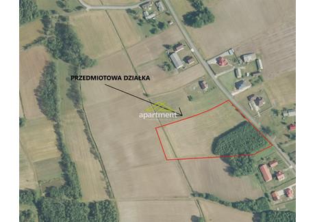 Działka na sprzedaż - Radgoszcz, Dąbrowski, 16 900 m², 138 000 PLN, NET-AP2-GS-10008
