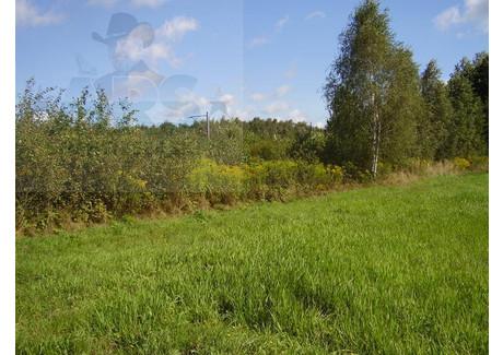 Działka na sprzedaż - Grubale, Siedlce, Siedlecki, 33 100 m², 231 700 PLN, NET-86/1216/OGS