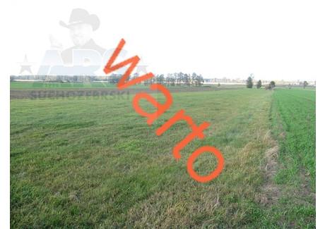 Działka na sprzedaż - Dziewule, Zbuczyn, Siedlecki, 7200 m², 150 000 PLN, NET-69/1216/OGS