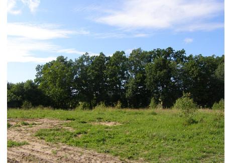 Działka na sprzedaż - Sasino, Choczewo, Wejherowski, 940 m², 100 000 PLN, NET-BAK-GS-23
