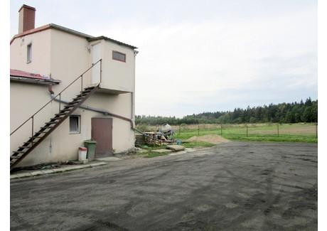 Dom na sprzedaż - Bolesławice, Słupsk, Słupski, 382 m², 799 000 PLN, NET-RE21-773-48945