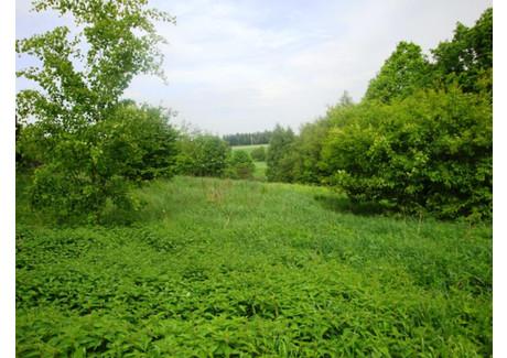 Działka na sprzedaż - Spacerowa Radlin, Wodzisławski (pow.), 2328 m², 75 000 PLN, NET-0113