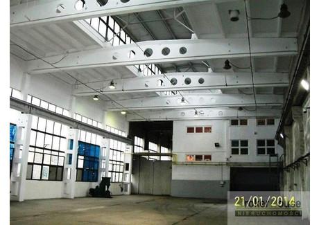 Hala do wynajęcia - Opole, 1800 m², 20 000 PLN, NET-3466