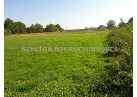 Działka do wynajęcia - Pławniowice, Rudziniec, Gliwicki, 2644 m², 100 PLN, NET-SLA-GW-76