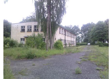 Działka na sprzedaż - Olszowa, Ujazd (gm.), Strzelecki (pow.), 24 500 m², 5 250 000 PLN, NET-8