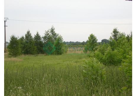 Działka na sprzedaż - Mroków, Lesznowola, Piaseczyński, 24 600 m², 5 904 000 PLN, NET-58702