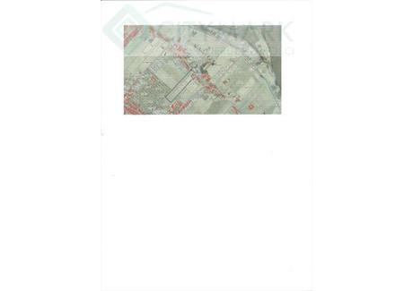 Działka na sprzedaż - Ciechocinek, Aleksandrowski, 43 000 m², 3 655 000 PLN, NET-69161