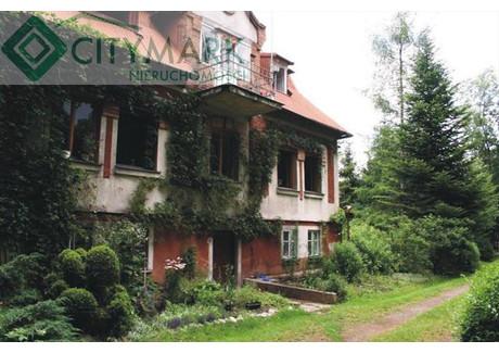Dom na sprzedaż - Swoszowice, Kraków, 300 m², 6 300 000 PLN, NET-66291