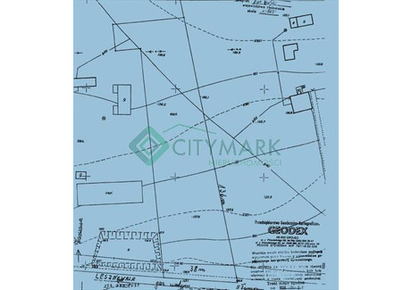 Działka na sprzedaż - Podole, Grójec, Grójecki, 5125 m², 456 125 PLN, NET-68044