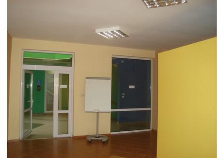 Biuro do wynajęcia - Centrum, Gubin, Krośnieński (lubuskie), 30 m², 800 PLN, NET-WLb/u-RE43-669-34498