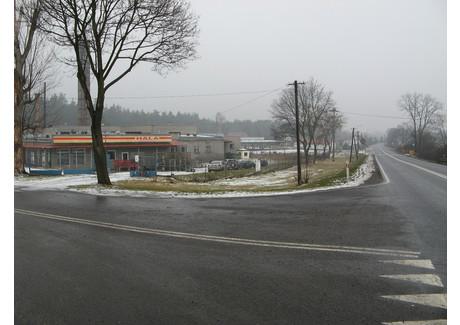 Komercyjne na sprzedaż - Krosno Odrzańskie, Krośnieński (Lubuskie), 1170 m², 1 000 000 PLN, NET-ROM-RE51-669-41666