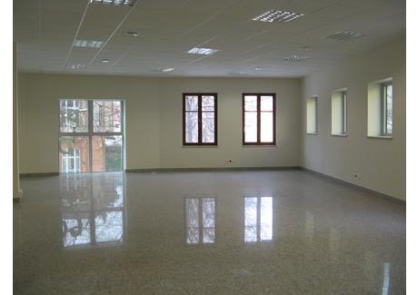 Biuro do wynajęcia - Deptak, Zielona Góra, 250 m², 15 000 PLN, NET-PAW-RE43-669-34492
