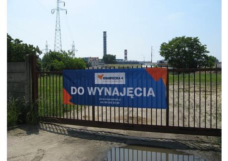 Działka do wynajęcia - Przemysłowa, Zielona Góra, 6200 m², 18 600 PLN, NET-PAW-RE33-669-36520