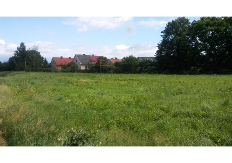 Działka na sprzedaż - Nowodworski, 2600 m², 170 000 PLN, NET-dz/02