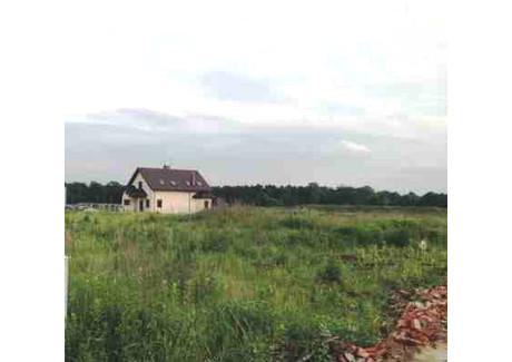 Działka na sprzedaż - Wilczyce, Długołęka (gm.), Wrocławski (pow.), 833 m², 105 000 PLN, NET-MGDZ04