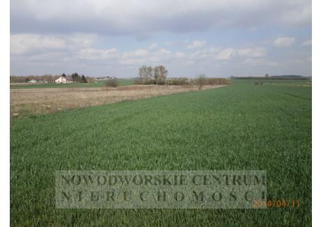 Działka na sprzedaż - Wojny Nowy Dwór Mazowiecki, Nowy Dwór Mazowiecki, Nowodworski, 10 800 m², 58 000 PLN, NET-727/251/ODzS
