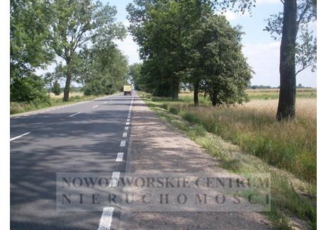 Działka na sprzedaż - Zakroczym, Zakroczym, Nowodworski, 13 700 m², 82 200 PLN, NET-461/251/ODzS