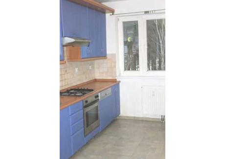 Mieszkanie na sprzedaż - Zielona Góra, 77,4 m², 280 000 PLN, NET-1290297