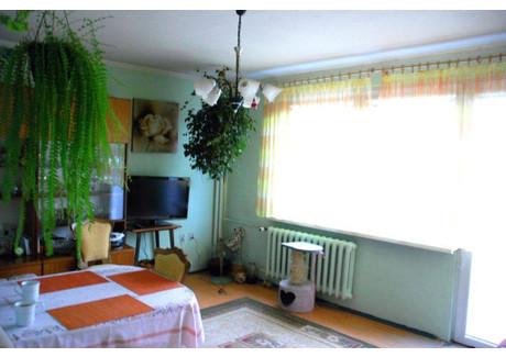 Mieszkanie na sprzedaż - Zielona Góra, 58,5 m², 169 000 PLN, NET-1390297