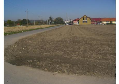 Działka na sprzedaż - Oleszna, Łagiewniki (gm.), Dzierżoniowski (pow.), 1500 m², 70 000 PLN, NET-US-0093D