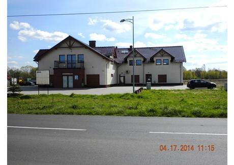 Lokal do wynajęcia - Ochla, Zielona Góra, 794 m², 7500 PLN, NET-85/1850/OOW