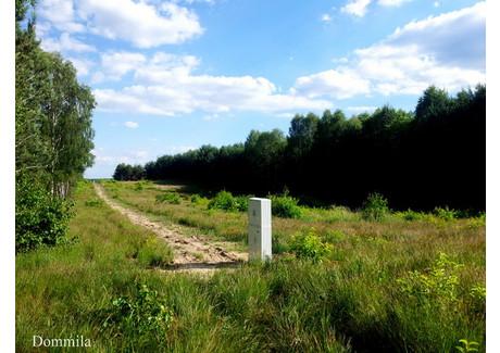 Działka na sprzedaż - Bukowa, Bełchatów, Bełchatowski, 3000 m², 135 000 PLN, NET-RE31-564-41404