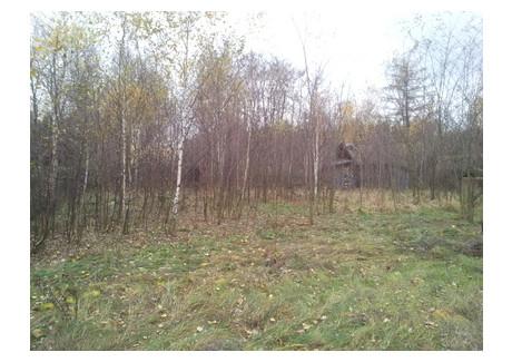 Działka na sprzedaż - Korablew, Rusiec, Bełchatowski, 1300 m², 60 000 PLN, NET-RE31-564-30393