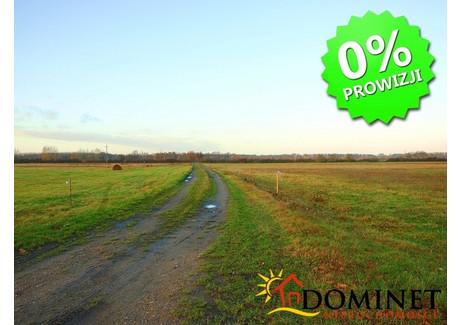 Działka na sprzedaż - Bukowina Bobrzańska, Szprotawa, 2500 m², 50 000 PLN, NET-326/DMN/GS