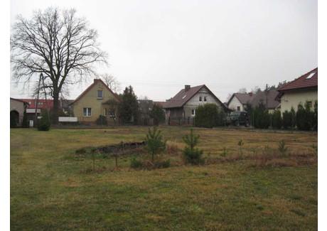 Działka na sprzedaż - Wielgowo, Szczecin, 1502 m², 288 000 PLN, NET-EVO00057