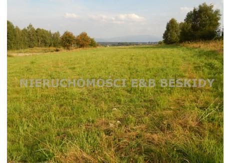 Działka na sprzedaż - Buczkowice, Bielski, 2400 m², 249 000 PLN, NET-EBB-GS-23