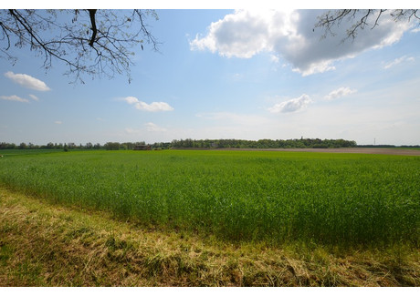 Działka na sprzedaż - Parkowa Złotniki, Prószków (gm.), Opolski (pow.), 3619 m², 157 770 PLN, NET-OF/0001016