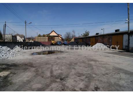 Magazyn do wynajęcia - Kępa, Łubniany, Opolski, 2500 m², 5000 PLN, NET-HW-576
